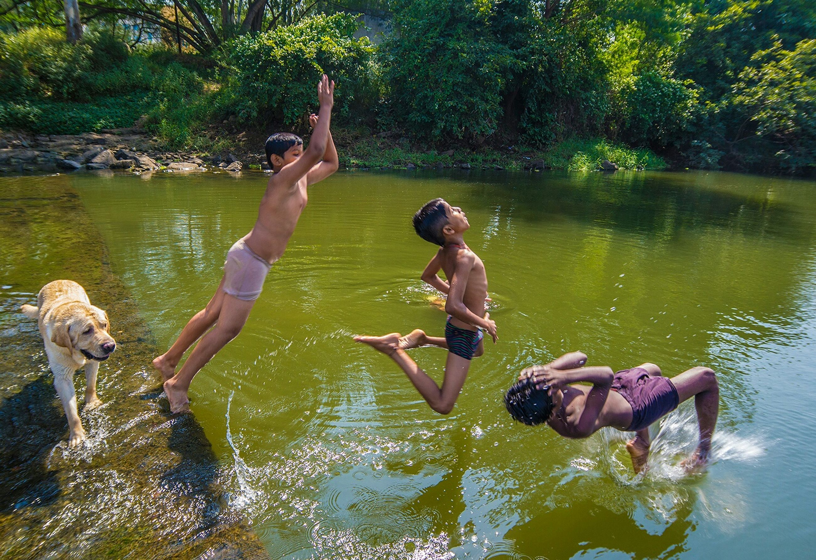 water, waterfront, togetherness, leisure activity, lifestyles, swimming, lake, animal themes, tree, full length, bonding, river, men, childhood, nature, boys, reflection