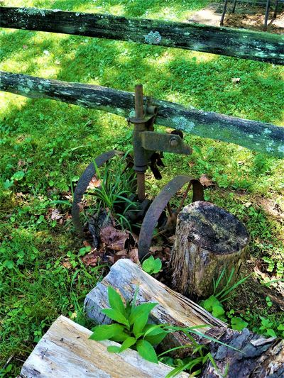 Antique Machinery Antique Indiana Antique Machinery Day Fence Field Focus On Foreground Forest Grass Green Color Growth Land Leaf Logs Metal Nature No People Outdoors Plant Plant Part Timber Tree Wheel Wood Wood - Material