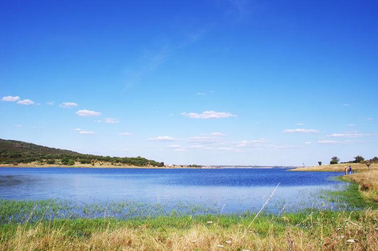 Alqueva Lake near Monsaraz village, Portugal Alqueva Lake Beach Blue Cloud - Sky Grass Lake Nature Plant Scenics - Nature Sky Tranquil Scene Water