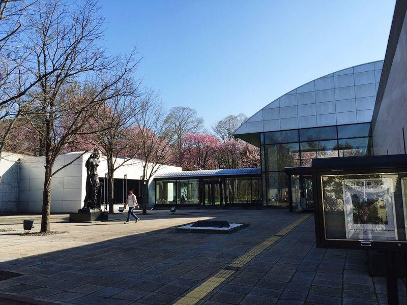 The Architect - 2016 EyeEm Awards Hokkaido,Japan Obihiro Museum Cherry Blossoms