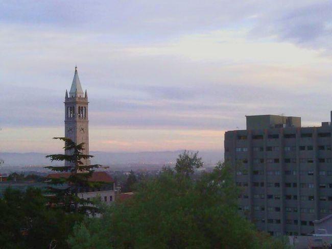 No People Sunset Clock Tower Tree Berkeley, CA Landscape Sky Buildings University