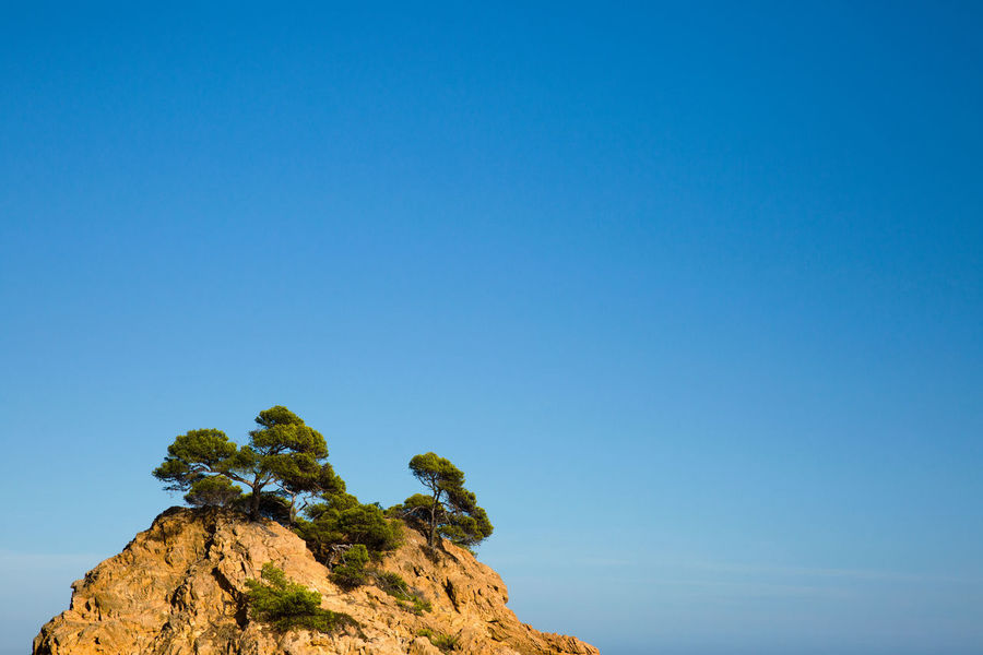 Sky Blue Clear Sky Copy Space Beauty In Nature Rock Tranquility Nature No People Day Rock - Object Scenics - Nature Low Angle View Solid Plant Tranquil Scene Tree Outdoors Rock Formation Mountain Mountain Peak Dry Sunlight Warm