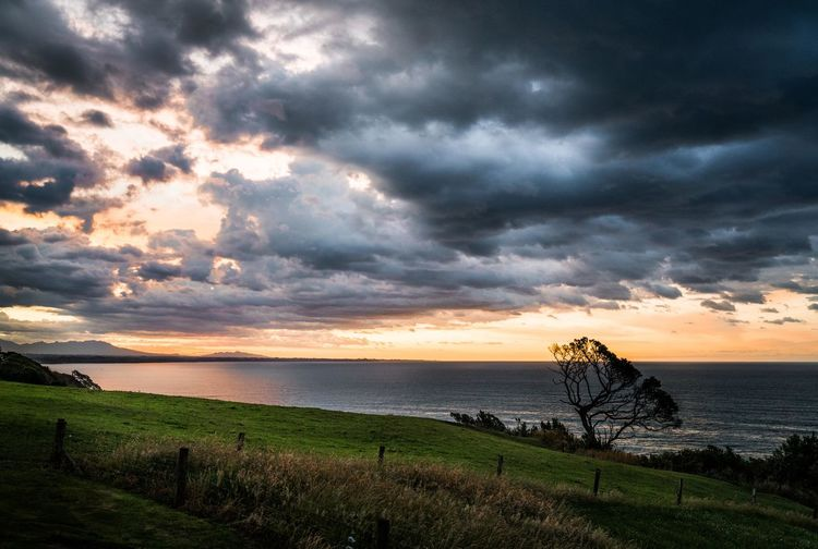 Beautiful sunset sky at Wai'iti, New Zealand Sunset_collection Sunset Clouds And Sky Dramatic Clouds Dramatic Clouds Sunset Orange Sky Orange Sky Sunset High Contrast Image Nature_collection Nature Photography EyeEm Nature Collection EyeEm Nature Photography Sony A7RII Sky Cloud - Sky Water Sea Beauty In Nature Tranquil Scene Scenics - Nature Tranquility Sunset Horizon Land Horizon Over Water Grass Plant Nature No People Idyllic Outdoors New Plymouth, NZ Tasman Sea New Zealand Scenery New Zealand Beauty New Zealand Landscape New Zealand Natural Pure New Zealand Travel Travel Destinations Travel Photography EyeEm Travel Photography Eyeem Travel Dark Clouds Reflection Reflections In The Water