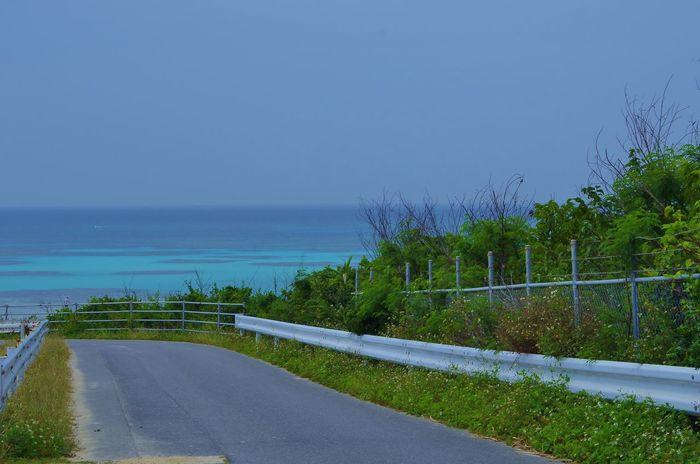 Toward the Beach, Nishi-Hama in Hateruma island Japan Photography Okinawa Haterumajima Holiday Road Sea Tranquil Scene Nature No People Day Clear Sky The Way Forward Blue Horizon Over Water Beach Scenics