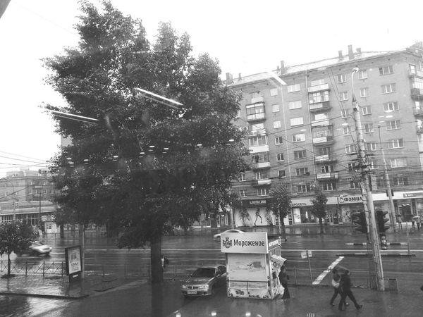 Сильный ветер. Novosibirsk