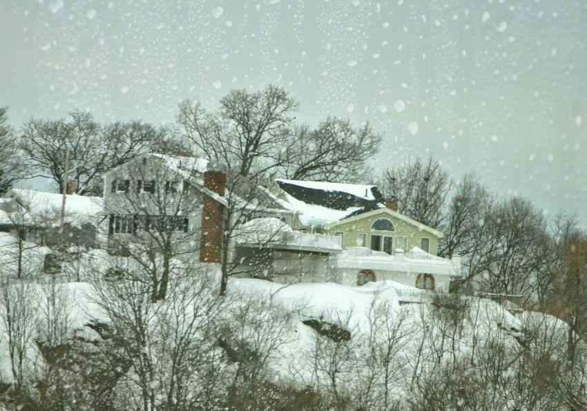 Another snowday in Boston Boston Weather Mission Mystery EyeEm Best Shots EyeEm Nature Lover EyeEm Best Edits EyeEmBestPics Instagood Instagram AsDigiClicks
