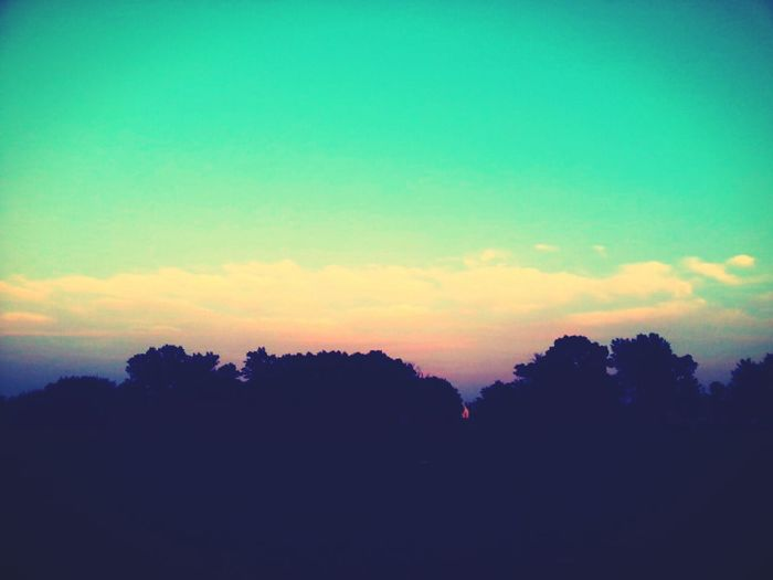 Beauty is overrated. Quality Time Relaxing Enjoying Life Winding Down First Eyeem Photo
