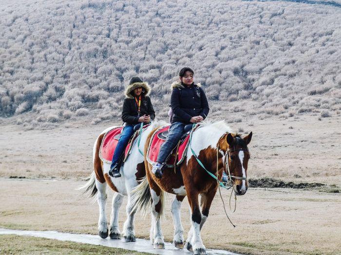 Full length of horse riding