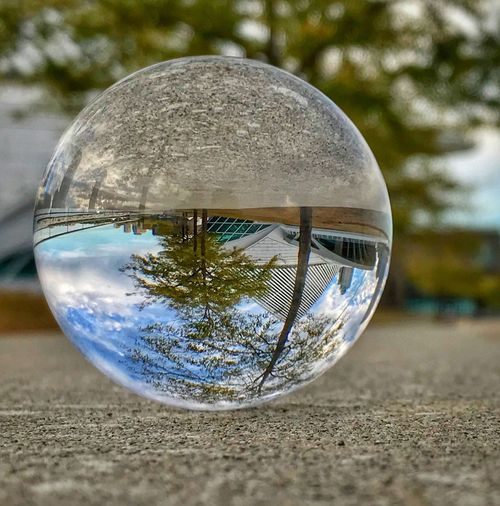 Lens Ball Upside Down Photography Architecture Sphere Glass - Material Close-up Crystal Ball Focus On Foreground No People Reflection Day Outdoors Tree Water