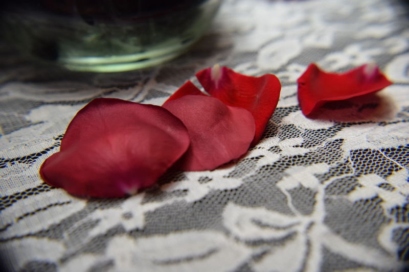 Red rose petals on white lace Close-up Cropped Elégance Freshness Indulgence People Red Red Romance Romance, Love, Concept,spring, Summer Rosé Softness Temptation