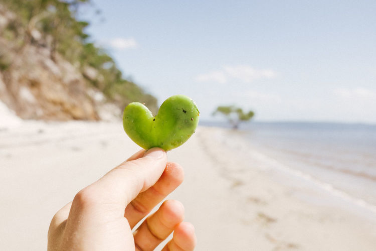 Cropped hand of person holding heart shape leaf at beach against sky