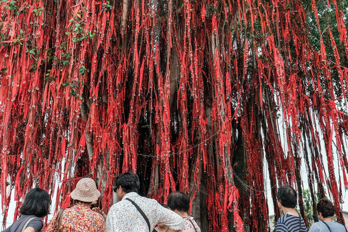 Red Tourist Tourist Attraction  Beauty In Nature Belief Crowd Cultural Group Of People Leisure Activity Lifestyles Nature Outdoors Rear View Togetherness Travel Destinations Tree My Best Travel Photo