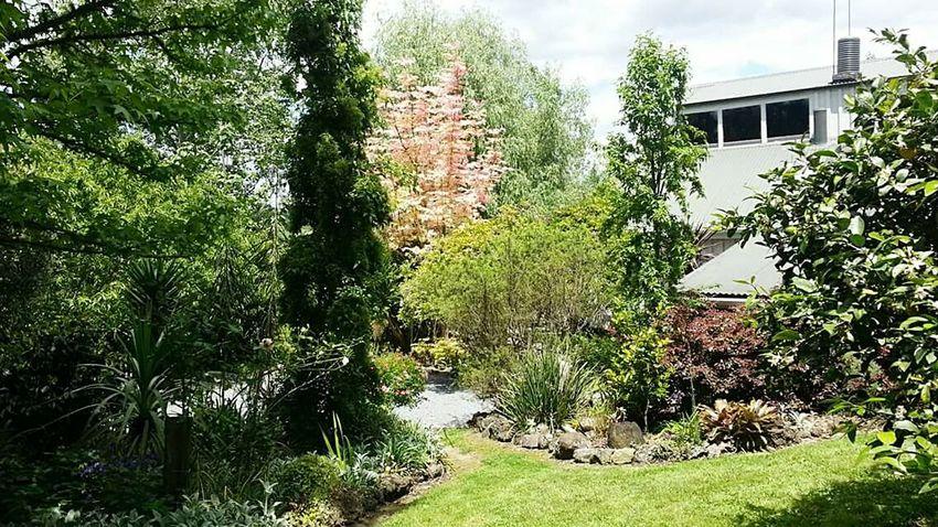 Home & garden..