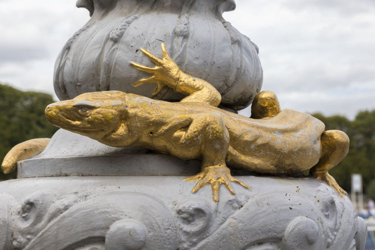 EyeEm Selects Reptile Lizard Outdoors Iguana Day Animal Themes Close-up Travel Destinations Gold Decoration Design Bridge Seine Seine River Paris France