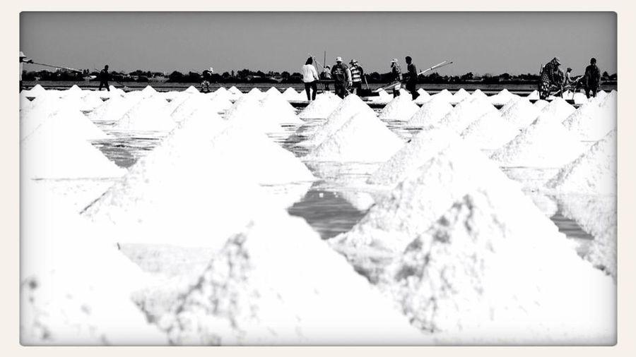 Salt Field!