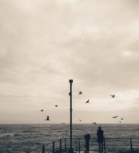 Crabbing Childhood Family Time Togetherness Sea Water Sky Outdoors Real People Nature Horizon Over Water Gulls In Flight Gulls And Sea Day Beauty In Nature People Black And White Bnw_collection Black And White Photography Welcome To Black Long Goodbye Live For The Story