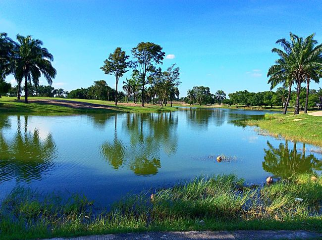 Water Reflections Water_collection Golfcourse Trees Green Grass Lake Eye4photography  Golf Is My Life ⛳️ Nature