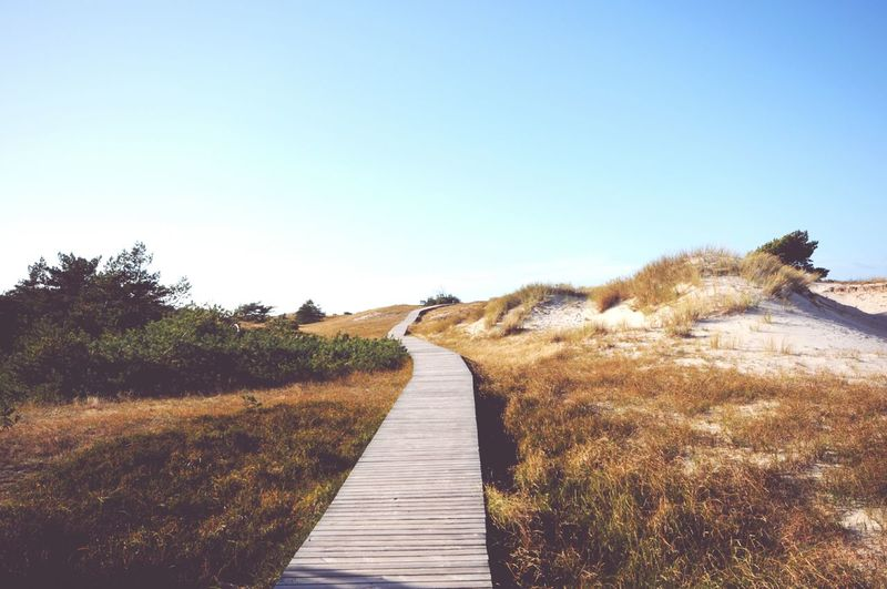 View Of Wooden Footpath Leading To Sand Dune