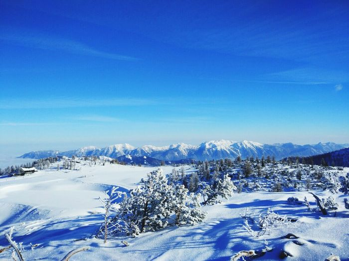 Snow Winter Cold Temperature Mountain Pine Tree White Color Landscape Blue Nature Mountain Range Tree Pinaceae Forest No People Scenics Frozen Outdoors Sky Beauty In Nature Clear Sky Been There.