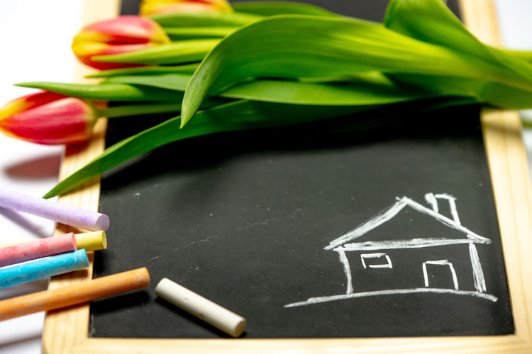 buying home Buying House House Home Spring Finance Investment Blackboard  Flower Close-up Chalk - Art Equipment Colored Pencil Chalk Drawing Formula Petal Flower Head Growing Eraser Blooming Drawing - Art Product Drawn