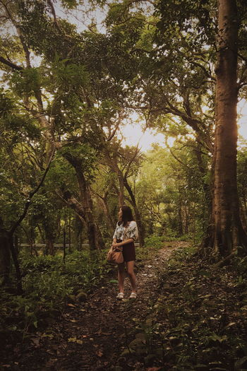Full length of young woman walking amidst trees in forest