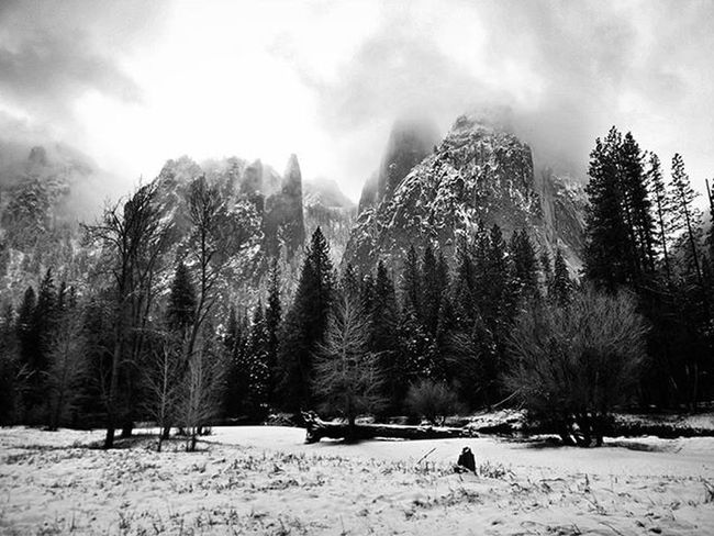 Had the best couple of days in Yosemite! It even snowed today! Travelling America USA California Yosemite Yosemitenationalpark Nationalpark Trees Snow Mountain Clouds Skyappreciationsociety Landscape Blackandwhite Nocolour ItEvenSnowed SnowAppreciationSociety IBuiltASnowMan DoYouWantToBuildASnowM Walking Hiking
