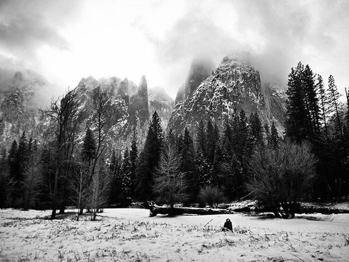 Had the best couple of days in Yosemite! It even snowed today! Travelling America USA California Yosemite Yosemitenationalpark Nationalpark Trees Snow Mountain Clouds Skyappreciationsociety Landscape Blackandwhite Nocolour ItEvenSnowed SnowAppreciationSociety IBuiltASnowMan DoYouWantToBuildASnowM Walking Hiking