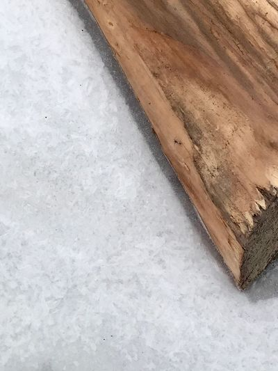 Wood in the ice Frozen In Place Log Wood Ice Cold Frozen Winter No People Wood - Material High Angle View Close-up Backgrounds