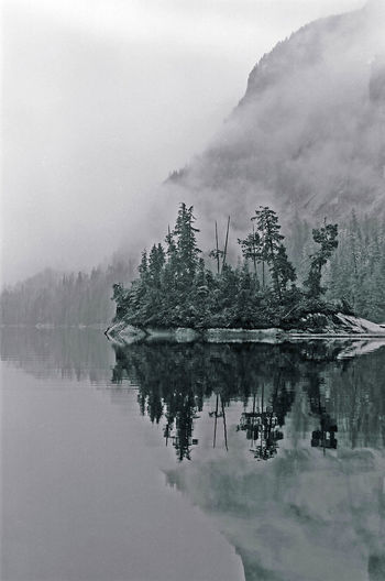 Misty Fjords Quiet Moments British Columbia Explore Finding My Way Seeking Solitude Adventure Shades Of Grey Tenacity Of Life Misty Days Misty Rain Forest Great Bear Rainforest Black And White Islandphotography Island Wilderness Scenics Mountain Range Remote Place Mountains And Clouds Storm Clouds Reflection Fog Tranquility Beauty In Nature Scenics - Nature Nature No People Landscape Outdoors