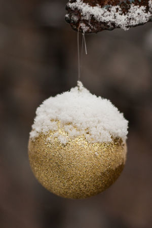 Christmas Christmas Ball Close-up Cold Cold Temperature Focus On Foreground Freshness Frozen Golden Hanging Outdoors Snow Winter