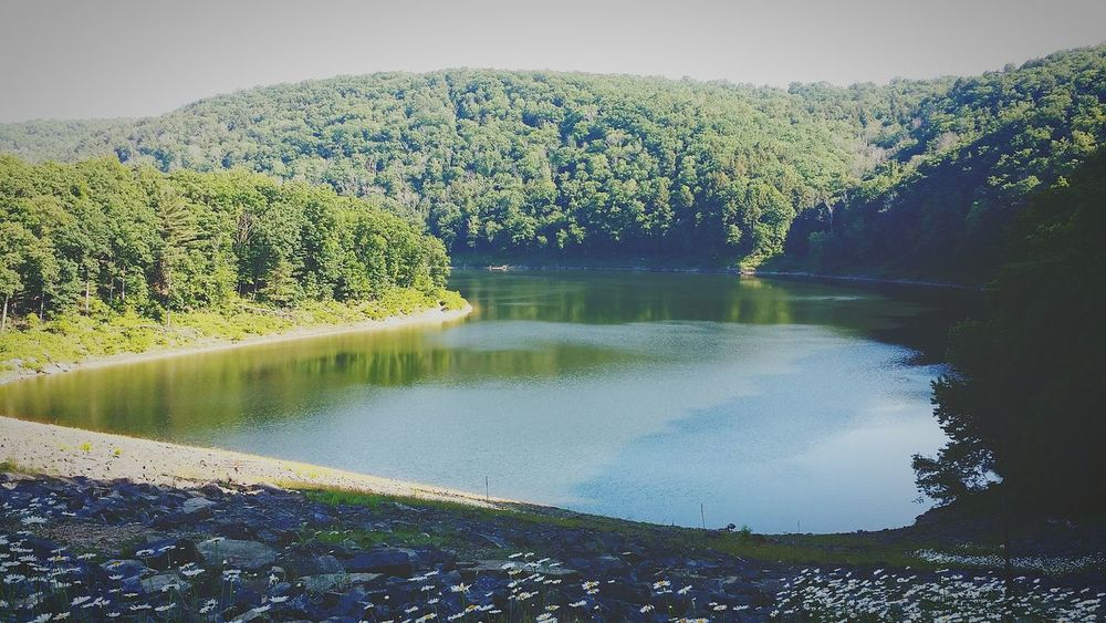 Reflection Beauty In Nature No People Tionesta Dam, Tionesta, Pa Allegheny National Forest Shadows & Lights Rocks And Water Summer Is Here 👌🏄 Nature