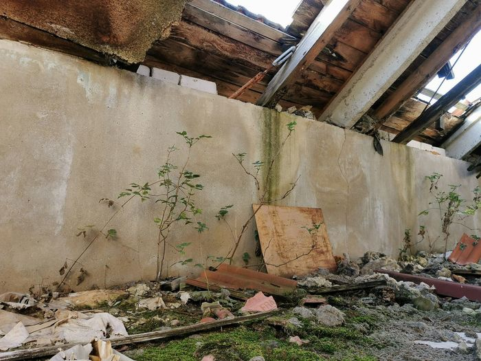 Damaged wall in abandoned building