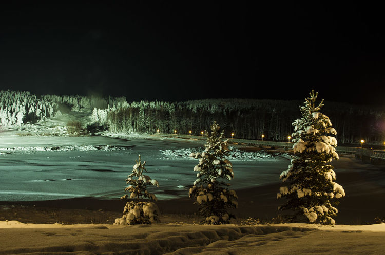 Storforsen In The Night Beauty In Nature Cold Temperature Frozen Illuminated Nature Night No People Outdoors Scenics Sky Snow Tranquil Scene Tranquility Tree Water Winter Perspectives On Nature