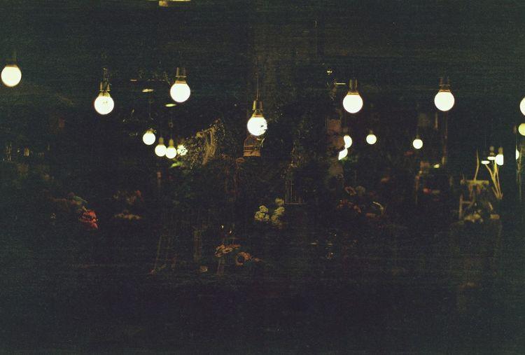 Flower Cafe Lights Film Camera Pentax