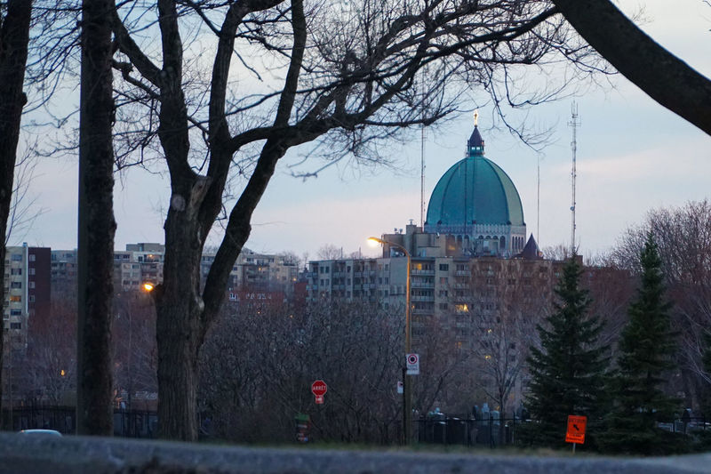 Architecture Bare Tree Branch Building Exterior Built Structure City Day Dome Dusk Mont Royal No People Outdoors Place Of Worship Religion Sky Spirituality St Joseph Tree