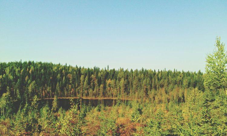 Karelia Nature