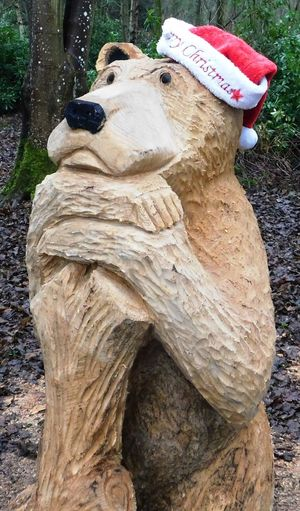 The magical fairy world found deep within Fullarton Woods, Troon, South Ayrshire, Scotland. Carved bear. Ayrshire, Scotland Bear Animal Themes Beauty In Nature Close-up Day Eyem Best Shots Fullarton Woods Mammal Nature No People One Animal Outdoors Tree Tree Trunk Troon Wood Carving