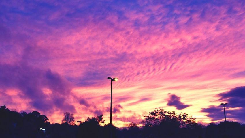 Dusky Parking Lot Tree Sunset Illuminated Silhouette Pink Color Street Light Sky Cloud - Sky Romantic Sky Dramatic Sky Sky Only Cloudscape