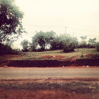 Nature Instaclick InstaEdits Time_pass pictureperfect likessimply