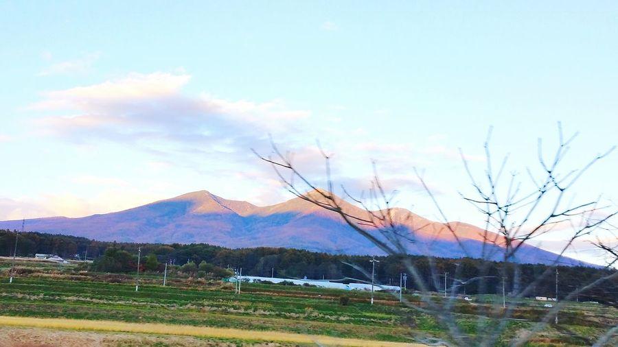 陽が傾き始めてしまったので、山全体が紅葉しているところが上手に撮れてませんね。(;´д`)写真は八ヶ岳です。私達の自宅周辺の山は、山全体が秋色に染まることはほとんどないので、「見て、山の全部が色づいてるよ、あっちも、こっちも」と楽しみました。遠出もいいものですね。 紅葉 八ヶ岳