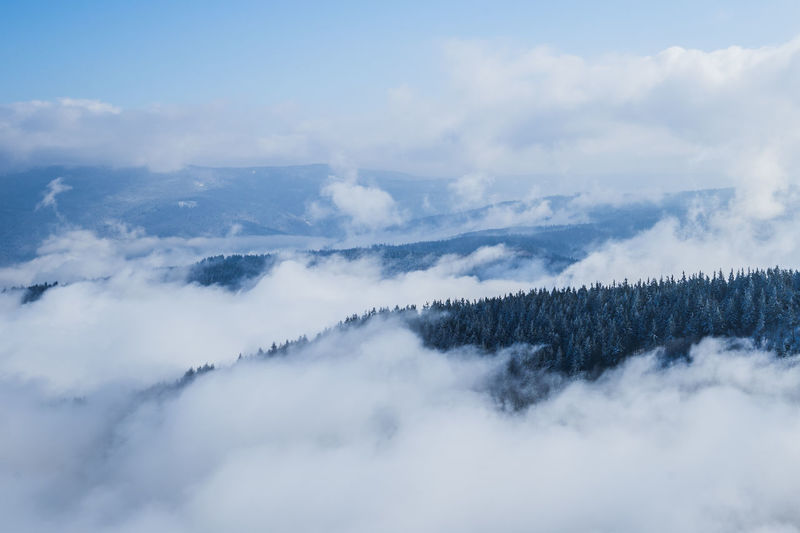 Cloud Foggy Weather Tree Beauty In Nature Blackforest Cloud - Sky Clouds Clouds And Sky Day Fog Foggy Foggy Day Foggy Landscape Forest Forest Photography Idyllic Mountain Nature No People Outdoors Scenics Sky Tranquil Scene Tranquility Tree