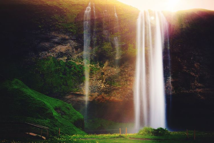 Seljalandfoss Iceland_collection Iceland Trip Nature Beauty In Nature Scenics Sunbeam Landscape Waterfall No People Idyllic Growth Sunlight Outdoors Tranquil Scene Rainbow Water Tranquility Sun Sunset Forest Plant Day EyeEm Selects