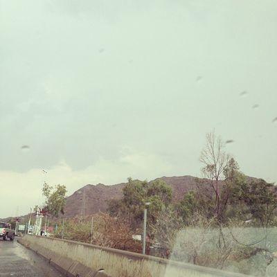يتبع أمطار_الطائف