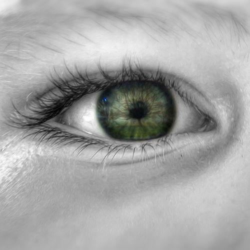 Keep it alive! Human Eye Eyeball Iris - Eye Close-up Backgrounds People Scenics EyeEm Best Shots EyeEm Gallery Hello World Photography Popular Photos 3XSPUnity Atmosphere Focus On Foreground ArtWork EyeEm Best Edits Surrealism Edit Artistic Looking At Camera Tree
