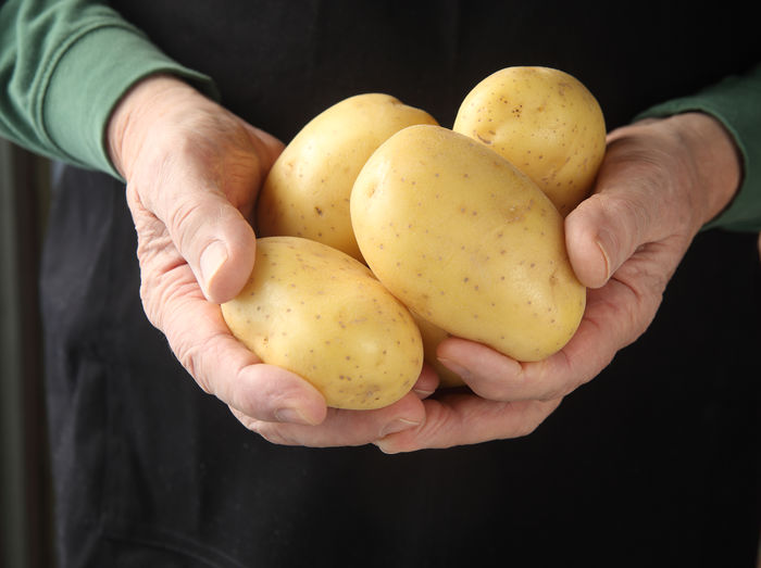 Midsection Of Man Holding Yukon Gold Potatoes