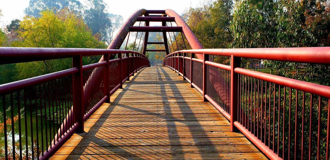 Empty footbridge in park