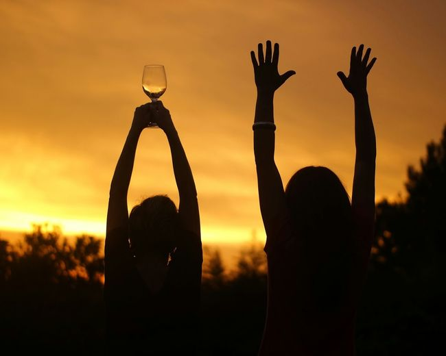 Women Holding Wineglass While Friend Raising Arms