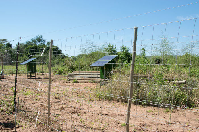 This solar fence was built to protect crops from elephants so children in the community don't have to spend nights in the fields. As a result, they can go to school. Africa Crops Development Electricity  Elephant Fence Fence Fuel And Power Generation Landscape Luangwa Solar Fence Zambia