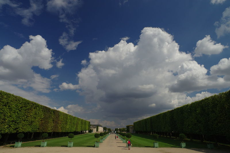 THREATENING CLOUD Cloud - Sky Day Garden Grass Landscape Men Public Garden Tree