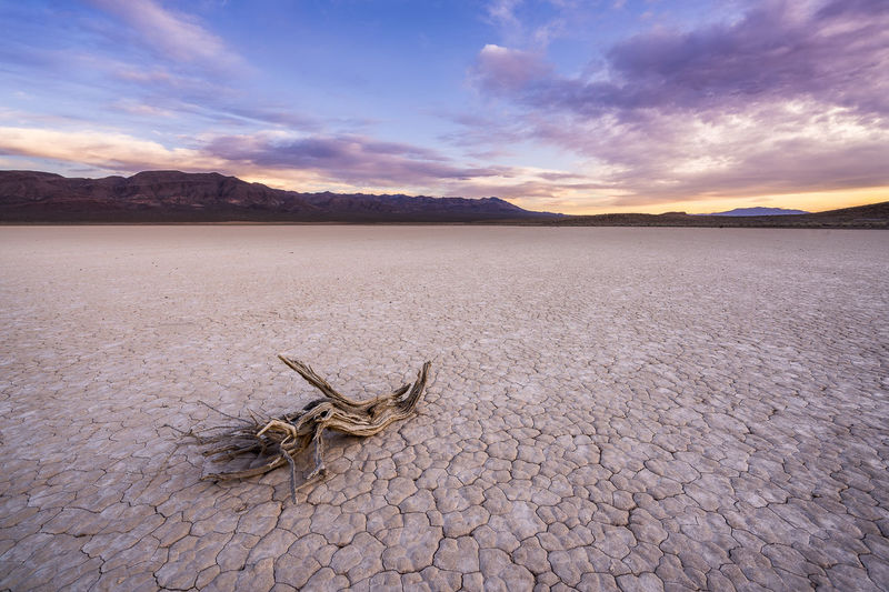 Sunset on a playa Animal Themes Arid Climate Beauty In Nature Climate Cloud - Sky Desert Drought Dry Environment Land Landscape Mountain Nature No People Outdoors Remote Salt Flat Scenics - Nature Sky Tranquil Scene Tranquility